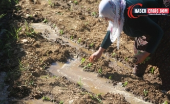 Koronavirus sonrası işsizlik, açlık kıskacı: Kentten köye dönüş başladı