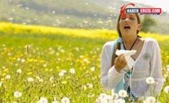 Bahar alerjisi belirtileri nelerdir? Bahar alerjisi nedir, neden olur?