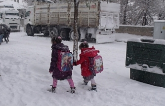 Başkale ve Çaldıran'da okullara kar tatili