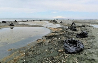 Van Gölü sahilinde 100 ton çöp çıktı