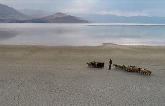 Van Gölü can çekişirken AKP rant peşinde!
