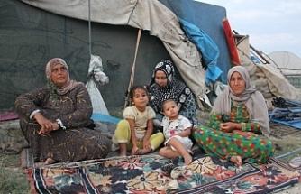 Yaşamak için geldikleri topraklarda sömürülüyorlar: 8 saat 56 lira