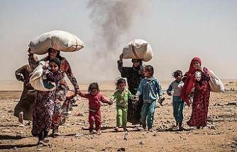 Êzidî aydınlar: DAİŞ'in Şengal'de yarım bıraktığını tamamlamak istiyorlar