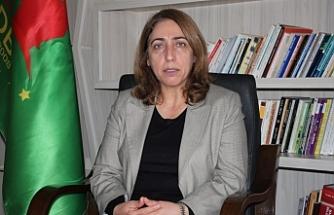 DBP Eş Genel Başkanı Aydeniz: Tecritle ittifakın önüne geçmeye çalışıyorlar