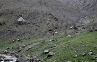 Van'da askerlerce öldürülen Khaledi'nin dosyası AYM kararına rağmen kapatılmak isteniyor