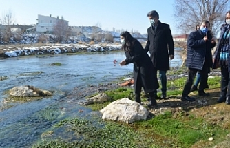 HDP heyeti Erciş'te Zilan Deresi'ne karanfil bıraktı
