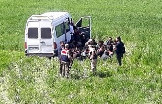 Van'da 49 mülteciyi taşıyan araç yoldan çıktı: 4 mülteci yaralı