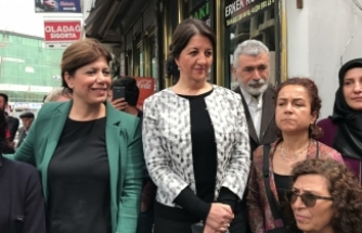 HDP Eş Genel Başkanı Pervin Buldan Erciş'te Halkla Buluştu