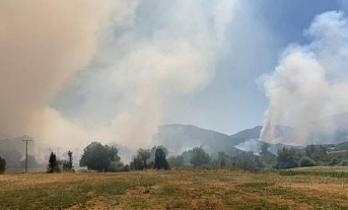 Bitlis'te yangın bir köyde kontrol altına alındı, bir köyde sürüyor