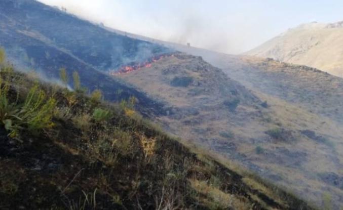 Çatak'ta arazi ve orman yangınları