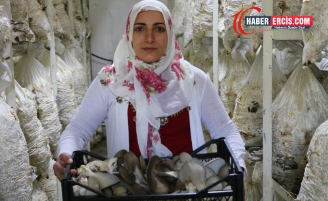 Van'da 12 kadınla birlikte 6 aydır mantar üretiyor