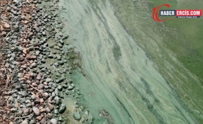 Erciş'te Gelîyê Zîlan'daki barajın yüzeyinde kimyasal madde paniği