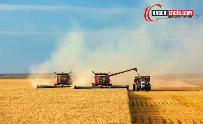 Urfa'da 2 milyon dönüm arazi hasat edilmeden sürülecek